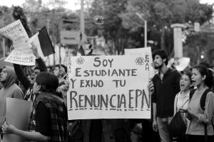 43 México Demonstration